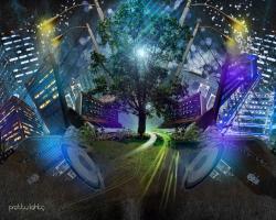Pretty Lights Wallpaper 24331 1440x900 px