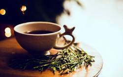 Pretty Tea Cup Wallpaper 42213 1680x1050 px