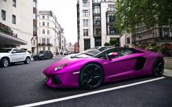 Purple Lamborghini Park