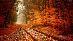Autumn Railroad
