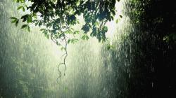 Rain Wallpaper; Rain Wallpaper ...