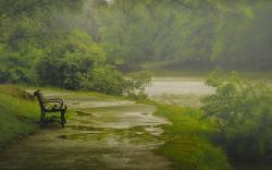 Nature Rain Wallpaper 12422