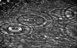 HD Wallpaper | Background ID:16284. 2560x1600 Photography Rain