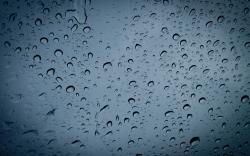 Rain Wallpaper 537