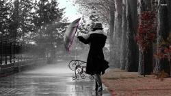 Girl in The Autumn Rain Wallpaper Photography Wallpapers