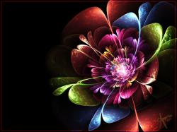 Rainbow Flower by The-Apparition ...