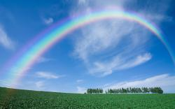 Description: The Wallpaper above is Rainbow landscape Wallpaper in Resolution 2560x1600. Choose your Resolution and Download Rainbow landscape Wallpaper