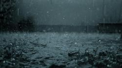 You Searched for Rain Wallpaper Hd Collection