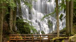 Ramona Falls Mount Hood Wilderness Oregon Wallpaper