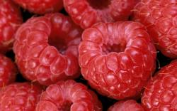 View and Download Raspberries wallpaper Raspberries wallpaper