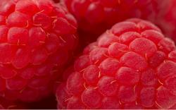 Raspberry hd