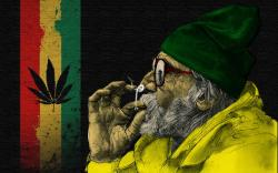 Jamaica Simboluri Rasta Windows Wallpapers Hd Background 2560x1600px