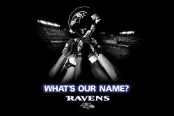 ... baltimore-ravens-wallpapers ...