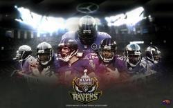 Baltimore Wallpaper 1440x900: Download Baltimore Ravens Wallpaper Backgrounds Free Ocn 2560x1600px