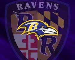 Ravens Wallpaper 14537 1280x1024 px