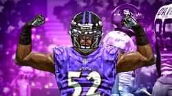 Madden 15 Connected Franchise   Ray Lewis Returns #1   Preseason Game 1 (Early Gameplay)