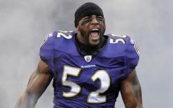 Ray Lewis Wallpaper HD