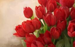 Red Flowers Images 9 HD Wallpapers