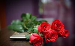 Red Roses Love