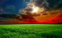 Description: The Wallpaper above is Red sunset fields Wallpaper in Resolution 2560x1600. Choose your Resolution and Download Red sunset fields Wallpaper