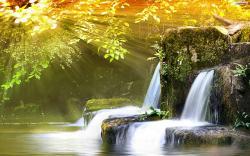 Spring River Wallpaper