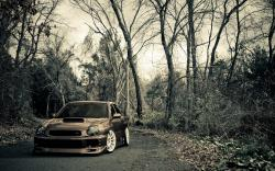 Road Forest Subaru Impreza