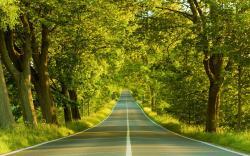 ... Road Wallpapers; Road Wallpapers