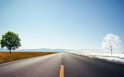 Road Wallpaper