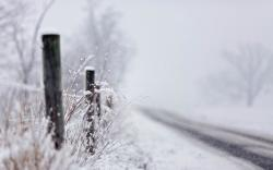 Road Winter Snowfall Nature
