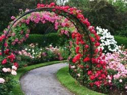 Image for Beautiful Rose Garden Wallpaper