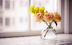 Roses Flowers Bouquet Vase