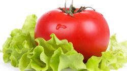 1920x1080 Wallpaper tomato, salad, vegetables, fresh