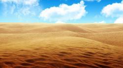 Savannah Desert
