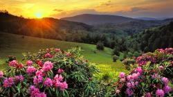 Amazing Scenery Pictures