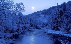 light of the moon scenic wallpaper