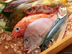 Seafood Wallpaper 42716 2560x1600 px