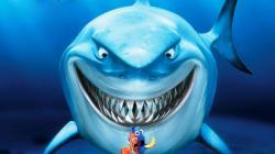 Shark #02 Image ...