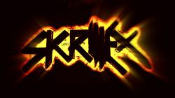 Skrillex wallpaper HD Res: 1920x1080 HD / Size:487kb. Views: 852343