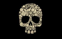 Skull Wallpaper Simple Cover HD Resolution 213 Backgrounds