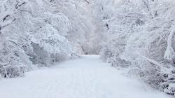 ... 6670-perfect-snow-1920x1080-nature-wallpaper