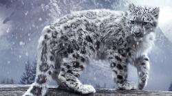 DOWNLOAD DESKTOP BACKGROUND: Snow Leopard Artwork - FULL SIZE ...