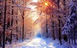 Desktop Wallpaper · Gallery · Nature Last snowfall