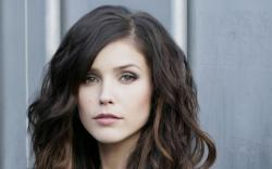 Sophia Bush Long Hair wallpaper