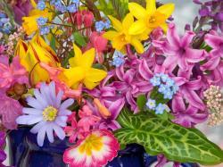Spring Flowers Wallpaper (38)