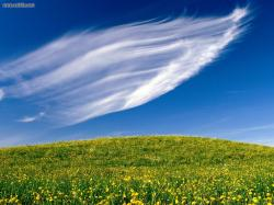 Clouds Sweeping Springtime Blossoms (3D Landscape)