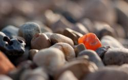 Nature stones macro pebbles depth of field wallpaper background