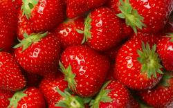Strawberries Close Up Wallpaper 45281 1920x1200 px