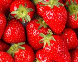 With the bounty of organic summertime strawberries currently available, there's no time like the present to appreciate all the exceptional health benefits ...