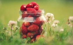 Strawberries Berries Jar Grass Nature