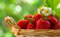 Strawberries - food Wallpaper